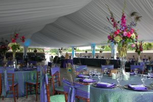 Buhl Mansion Tent (12)